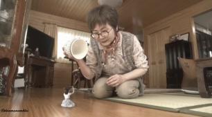grandma meets the one inch princess