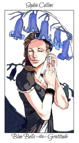 sophie collins