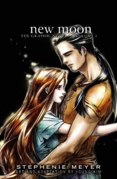 new moon graphic novel vol 1